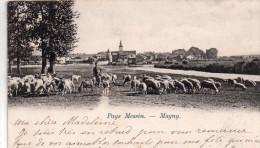 Cpa  Au Pays Messin 57 Magny ..le Berger Et Ses Moutons - Francia