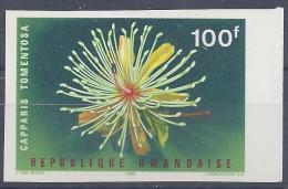 "RWANDA - 1966 -  N° 157 -   "" CAPPARIS TOMENTOSA ""  - NON DENTELE - XX - MNH - TTB - - Rwanda"
