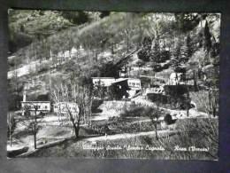 LOMBARDIA -VARESE -RASA -F.G. LOTTO N 420 - Varese