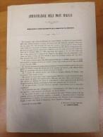 AMMINISTRAZIONE DELLE POSTE ITALIANE - 1863 Bando Per L'appalto Del Trasporto Dei Dispacci E Gli Oggetti Dall'amministra - Decrees & Laws