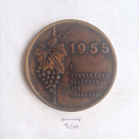 Medal / Plaque (Plakette) PL000002 - 1st International Vine Exibition 1955 Yugoslavia Slovenia Ljubljana - Tokens & Medals