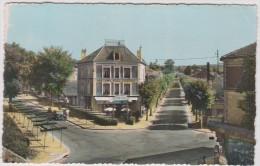R :   Val De Marne :  SUCY  En  BRIE  : Le  Boulevard  De  Verdun  1957 - Sucy En Brie
