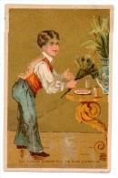 """CHROMOS & IMAGES, CHROMOS, """"Les Bonnes Plumes Font Les Bons Plumeaux""""...""""Les Belles Plumes Font Les Beaux Oiseaux""""... - Chromos"""