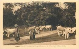 Réf : PIE-14 - 312 :  OUGNEY Pâturages à La Trappe D'Acey - Francia