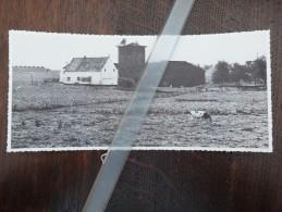 Kobbegem Torenhof -Knipsel-Coupure-collage