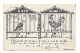 10941 - Ztrata Zla Povest Drozd Kohout Franta Hrekik Coq Et Oiseau - Tchéquie