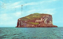 Postcard - Bass Rock Lighthouse, Firth Of Forth. PT35750 - Vuurtorens