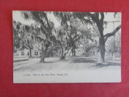 Rotograph  --   Florida> Tampa View in Desoto Park    ref 1642