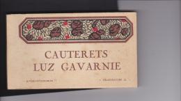 CARNET  DE  20 CPA  DE  CAUTERETS  LUZ  GAVARNIE  - ( VOIR SCANS ) - 5 - 99 Cartes