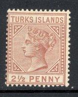 TURKS ISLANDS, 1882 2½d Red-brown Very Fine MM, Cat £40 - Turks- En Caicoseilanden