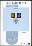 BRD - 2005 ETB 31/2005 - Michel 2484 / 2485 - 10-40C  Blumen, Tulpe, Leberblümchen - [7] Federal Republic