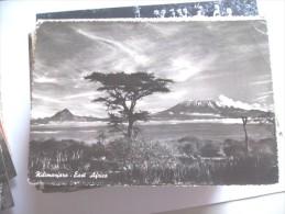 Africa Tanzania Kilimanjaro And Tree - Tanzania