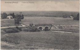 23841g PONT  -  PRAIRIE - VALLEE De L'OURTHE - Bonnerue - Libramont-Chevigny