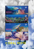 Mayreau Grenadines Of St. Vincents-2014-Marine Life-Coral Reef-Turtle - St.Vincent E Grenadine