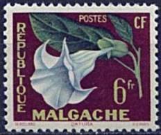 Madagascar, n� 336 � n� 337** Y et T