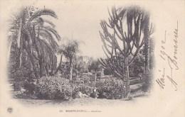 Monte-Carlo Jardins N° 23 - Jardín Exótico