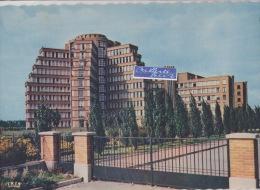 LILLE LA CITÉ HOSPITALIERE - Lille
