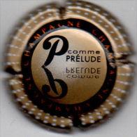 C0411 - CHAMPAGNE - 799d - P.Prélude - Champagne