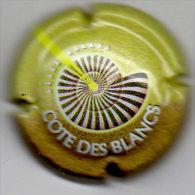 C0727 - COTE DES BLANCS - 1 - Polychrome - Champagne