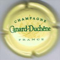C1339 - CANARD-DUCHENE - 74 - Jaune Crème - Champagne