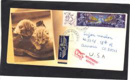 Lettre Illustrée Chats  Yvert 2918 Champs Elysées Cachet Poix De Picardie 1995  Pour USA Adresse Insuffisante - France