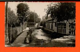 76 VEULES Les ROSES : L'abreuvoir Sur La Pittoresque Rivière à Truites - Veules Les Roses