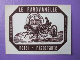 HOTEL ALBERGO PENSIONE PADOVANELLE PADOVA ITALIA ITALY TAG DECAL STICKER LUGGAGE LABEL ETIQUETTE AUFKLEBER