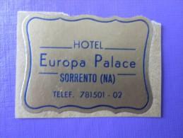 HOTEL ALBERGO PENSIONE EUROPA PALACE MINI SORRENTO ITALIA ITALY TAG DECAL STICKER LUGGAGE LABEL ETIQUETTE AUFKLEBER