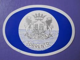HOTEL ALBERGO PENSIONE BRISTOL BLUE SORRENTO ITALIA ITALY TAG DECAL STICKER LUGGAGE LABEL ETIQUETTE AUFKLEBER - Hotel Labels