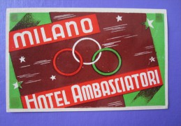 HOTEL ALBERGO PENSIONE AMBASCIATORI BIG MILANO ITALIA ITALY TAG DECAL STICKER LUGGAGE LABEL ETIQUETTE AUFKLEBER