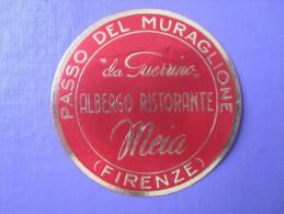 HOTEL ALBERGO PENSIONE MEIA FIRENZE FLORENCE ITALIA ITALY TAG DECAL STICKER LUGGAGE LABEL ETIQUETTE AUFKLEBER