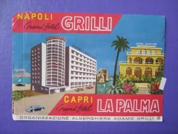 HOTEL ALBERGO PENSIONE PALMA CAPRI NAPOLI GRILLI ITALIA ITALY TAG DECAL STICKER LUGGAGE LABEL ETIQUETTE AUFKLEBER