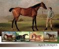 Liberia-2014-Fauna-animal S-Race Horses - Liberia