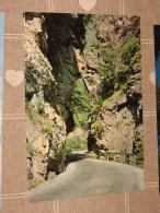 CAREZZA STRADA DELLE DOLOMITI COLORI NV - Bolzano (Bozen)