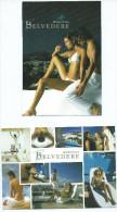 GREECE GRECE - Hotel BELVEDERE MYKONOS Lot De  2 Cartes(charme Nu Nue) Voir Scans  R/V Des 2 Cartes *PRIX FIXE - Grèce