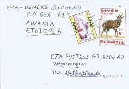 Ethiopia 2014 Awasa Bushbuck Mosque 3Br Cover - Ethiopië