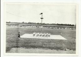 PHOTO 2 - F�te de la jeunesse de Voves 1961