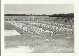 PHOTO 4 - F�te de la jeunesse de Voves 1961