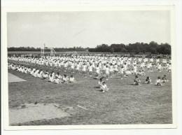PHOTO 5 - F�te de la jeunesse de Voves 1961
