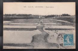 ILE DE RE 17 - LES PORTES - Marais Salants - Animée - Ile De Ré