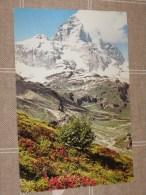 CERVINIA BREUIL COLORI NV                          Qui Entrate!!! - Aosta