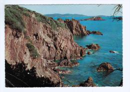 CPM Presqu'Ile De GIENS  Rochers De Polynésie , Ribaud Et Porquerolles  1968 ( 1435  )    PRIX FIXE ! - Saint-Mandrier-sur-Mer