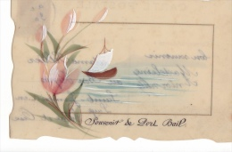 24307 PORT-BAIL - Souvenir - Cpa Rodoide Peinte Bateau Fleur -sans Editeur