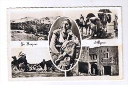 ALGERIE  5 Vues