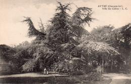 Cpa  17  Aytré , Villa Des Cedres - Autres Communes