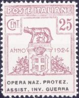 SI53D Italia Italy Regno Emesso 1924 Enti Semistatali 25 C.nuovi Sg. Filg. Corona Opera Naz. Protez. Assist. Inv. Guerra - 1900-44 Vittorio Emanuele III