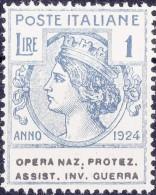 SI53D Italia Italy Regno Emesso 1924 Enti Semistatali 1 L.nuovi Sg. Filg. Corona Opera Naz. Protez. Assist. Inv. Guerra - 1900-44 Vittorio Emanuele III
