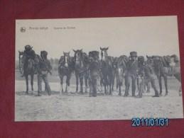 MILITARIA - ARMEE BELGE  -  Escorte De Guides - Régiments