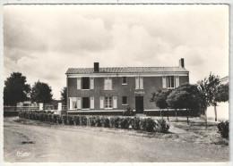 85 - THIRE - Mairie De Thiré - CIM 11 - France