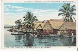 CARTI GRANDE UNA DE LAS ISLAS DE LA COSTA DE SAN BLAS REP DE PANAMA 99218 - Panama